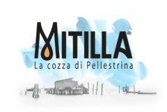 mitilla-3-scaled-1